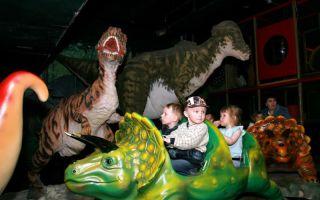 Куда сходить с ребенком в санкт-петербурге: развлечения и квесты