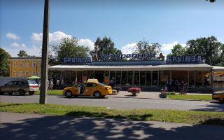 Кафе брынза петергоф – вкусная еда и пейзаж на парк петродворца