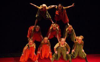 Упсала цирк в петербурге — большой отзыв-обзор