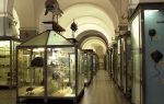 Музей-квартира набокова на б. морской в санкт-петербурге