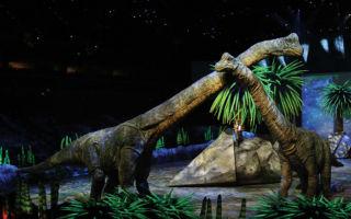 Музей динозавров в петербурге: прогулка с «живыми» ящерами