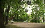 Куда сходить в санкт-петербурге туристам? актуальное в 2019