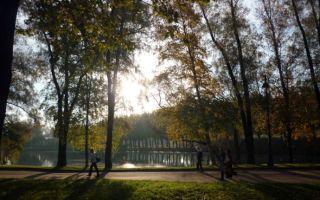 Парк победы: светлая память и гордость петербурга