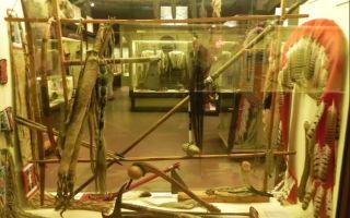 Музей рекордов и фактов в петербурге: интересно о необычном