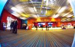 Трц мега дыбенко петербург – территория шопинга и развлечений