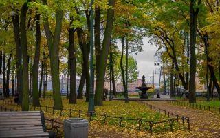 Румянцевский сад в санкт-петербурге: интересные легенды