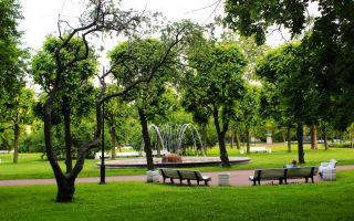 Сад смольного — место для прогулок в санкт-петербурге