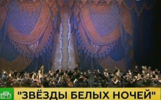 Фестиваль современного танца в санкт-петербурге — open look 2019