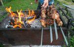 Где можно пожарить шашлыки в санкт-петербурге