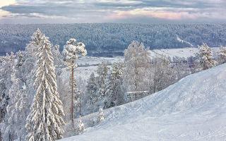 Курорт снежный ленинградская область, вблизи поселка коробицыно